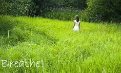 נשימה ותרגילי נשימה לשחרור סטרס, לרוגע ולמודעות עצמית