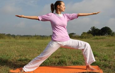 yoga  what is yoga  yoga for beginners  the art of