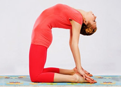 yoga poses for shoulders  unfreeze your shoulders with