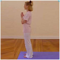 how to do surya namaskar  sun salutation sequence  the