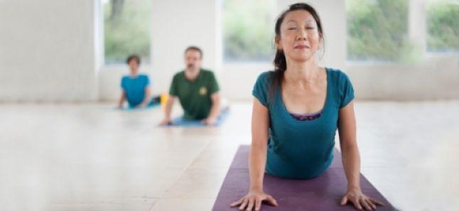 ય ગ ય ગ શ છ Yoga In Gujarati The Art Of Living India