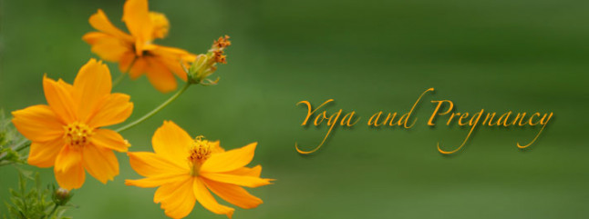 Yoga for Pregnant Women   Yoga and Pregnancy