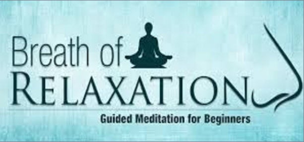 Meditation | The Art of Living