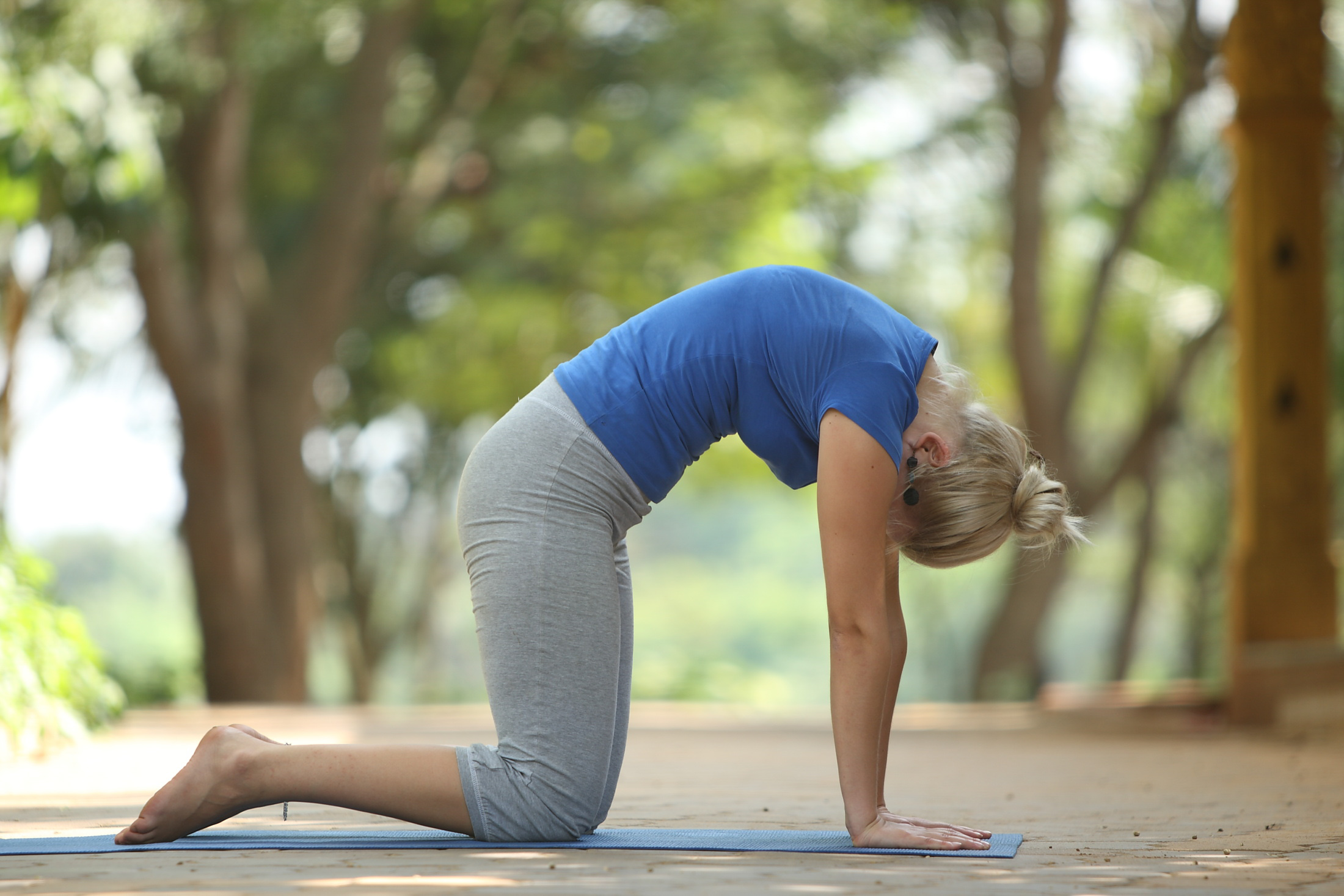10 Basic Easy To Do Yoga Poses For Beginners The Art Of Living India