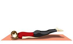 yoga for fatty liver  yoga to reduce cholestrol  lower