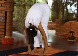 Uttanasana in Hindi