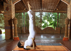 yoga tips for winter  the art of living  the art of