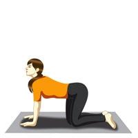 Yoga - Sudarshan Kriya - Meditation