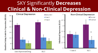 SKY Significantly Decreases Clinical & Non-Clinical Depression
