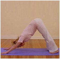 Sun Salutation yoga pose 8